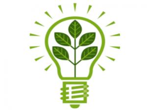 green-bulb-2-300x225